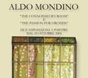 Mondino03
